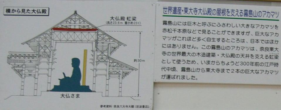 日向国(宮崎県)から大和国までアカマツを輸送した経路