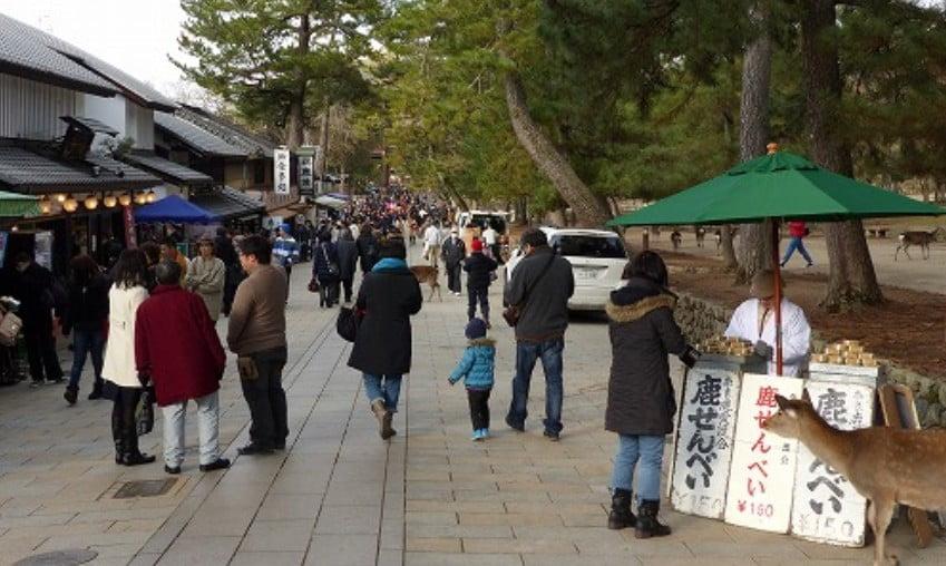 奈良東大寺・奈良公園の周辺・付...