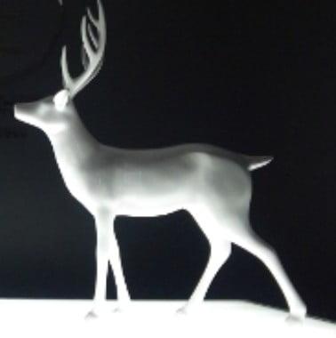 「純白の鹿」の背に跨った「武甕槌命」