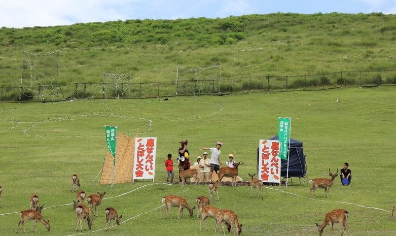 奈良公園(若草山)「鹿せんべい飛ばし大会」