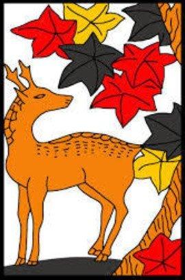 謎と神秘に包まれた!奈良公園の鹿の「種類・生態(いる場所・寝床・1日の行動)・食べ物」を暴露!!